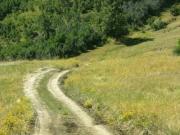 mellow_trail_through_bear_basin