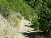steep_and_narrow