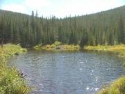 beaver_pond_part_2