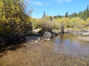 beaver_creek_crossing_part_2
