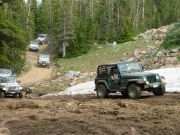 jed_and_more_jeeps