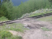 railroad_tracks_crossing