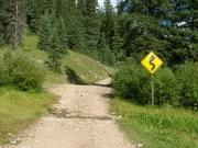 wavy_road