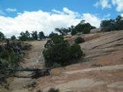 fun_climb