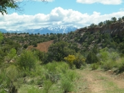 la_sal_mountains_in_the_distance