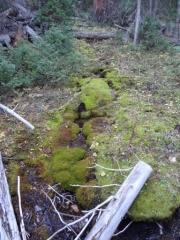 mountain_creek