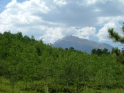 first_sight_of_longs_peak