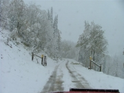 seasonal_gate