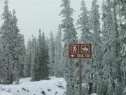 trail_1101