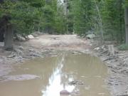big_puddle