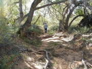 hiking_trail_part_4