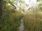 hiking_trail_part_5