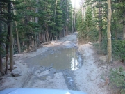 puddle_2