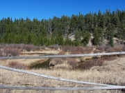 caribou_creek