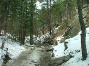 messy_trail