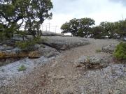 cedar_rim_picnic_hike