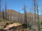 cedar_mountain