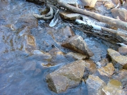 creek_rocks