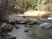 tarryall_creek