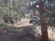 austin_finishing_the_trail