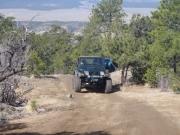 austin_on_the_trail