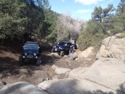jeeps_at_whales_tail