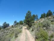 narrow_climb