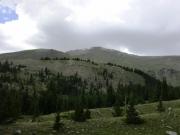 taylor_mountain