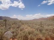 desert_view