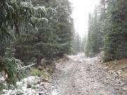 climbing_into_snow