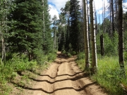 tire_tracks