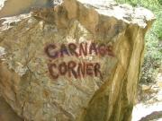 carnage_corner