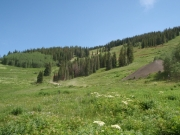trail_up_the_basin