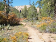 hiking_trail_part_1