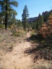 hiking_trail_part_3