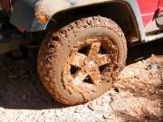 monica_muddy
