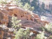 mule_canyon_ruins