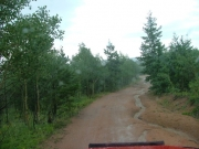 wet_trail