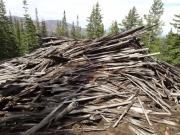 timber_part_3