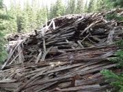 timber_part_4