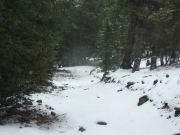 snow_on_the_trail