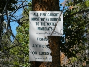 fishing_sign_2