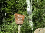 national_forest_sign