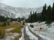 snowy_tracks
