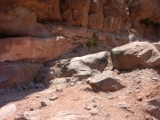 cliff_obstacle_part_1