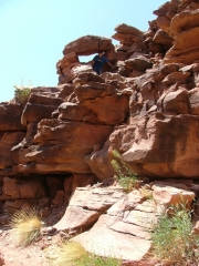 colten_in_scenery