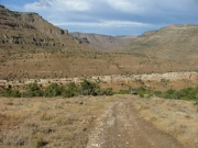 trail_to_the_mesas