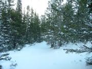 virgin_snow_trail