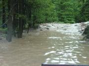 lots_of_muddy_water