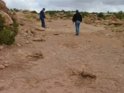dinosaur_tracks_part_3